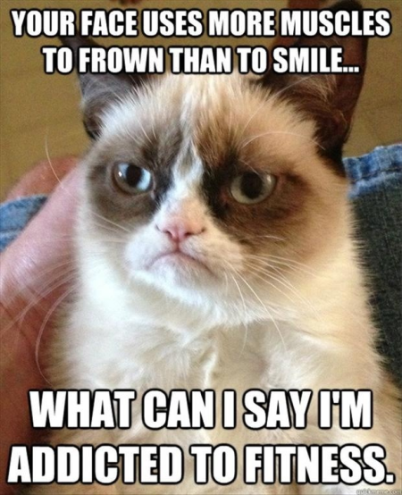 Grumpy-Cat-Is-Addicted-To-Fitness-Funny-Pic
