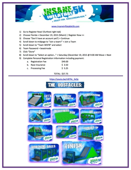 Insane Inflatable Obstacle 5K Run - Flyer