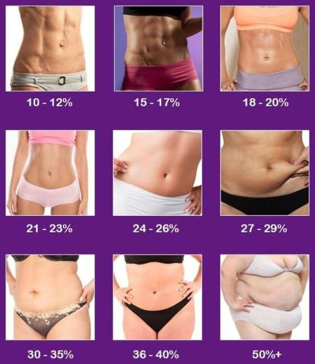 body-composition-chart-female