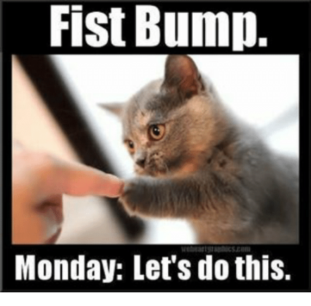 fist-bump-monday-lets-do-this-13488624